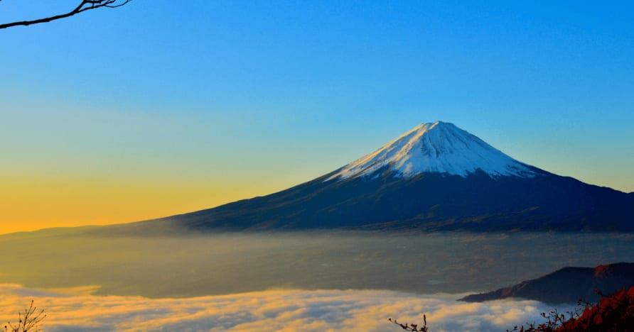 Japan överväger skatt för utlänningar på vinster från landcasino