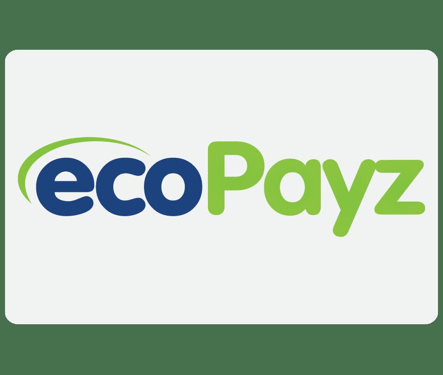 Alla 19 Online Casinon med EcoPayz